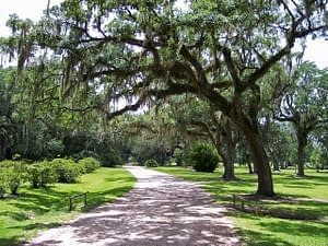 7 Reasons Beaufort South Carolina is the Best Place to Live